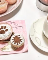 Cupcakes alla ricotta e gocce di cioccolato