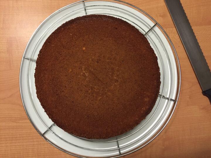 Torta Gianduja - Foto 12